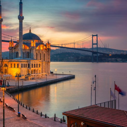 Istanbul International Academic Conference on Humanities & Social Sciences