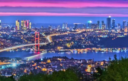 Istanbul International Academic Conference on Business & Economics